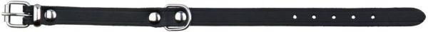 Basic Halsband M-L: 39-48 cm/22 mm, schwarz