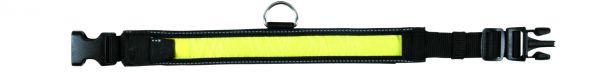 Flash Halsband, M-L: 40-55 cm/35 mm, schwarz/gelb
