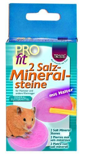 2 Salz-Mineralsteine mit Halter, 54 g