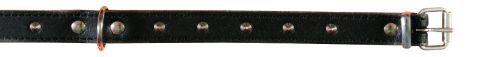 Basic Leder Halsbänder, Nieten, 21-25 cm/12 mm, schwarz