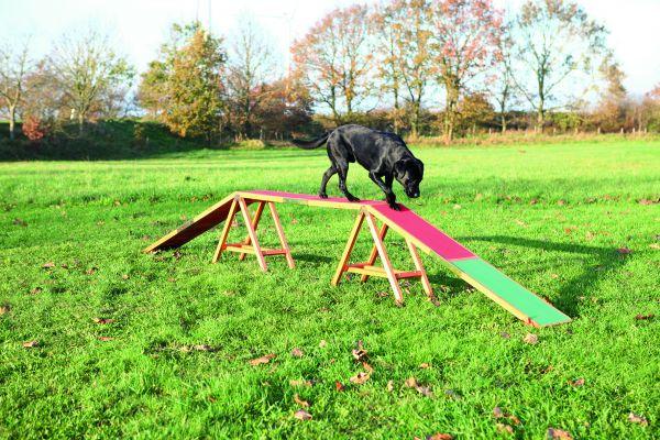 Dog Activity Agility Steg 456 × 64 × 30 cm