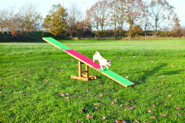 Agility Wippe, 300×54×34 cm
