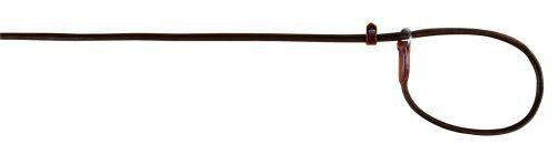 Active Retrieverleine, rundgenäht, 1,70 m/ø 13 mm, braun