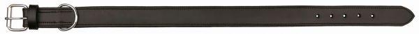 Active Halsband Leder, XL: 65-75 cm/40 mm, schwarz