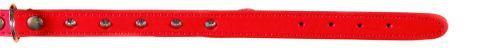 Basic Leder Halsbänder, Nieten, 21-25 cm/12 mm, rot