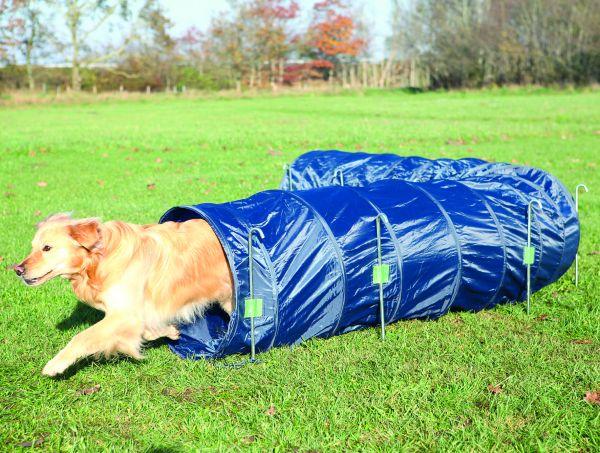 Dog Activity Agility Basic Tunnel, ø 60 cm/5 m, blau